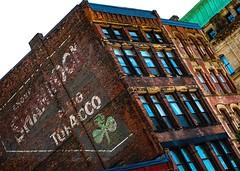 Old indulgences (Jamie McCaffrey) Tags: architecture brickwork maritimes canada advertising shamrock newbrunswick saintjohn