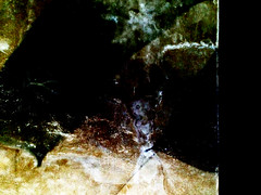 Darkness (De Rode Olifant) Tags: darkness qoute stephenking marjansmeijsters