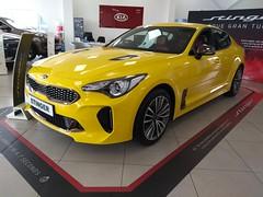 2018 Kia Stinger GT S (MonkeysBirthday) Tags: car automobile kia stinger korean import
