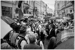 Bukovinian Romanians celebrate something and sing on the street. (Ігор Кириловський) Tags: 135 35mm kyrylovskyy kirilovskiyigor bw kobylianskoistr herrengasse chernivtsi ukraine viewfinder agfaoptima1035sensor agfa solitars40mmf28 film kodak400tmax rodenstockyellowmedium8 markstudiolab bukovinianromanians celebrate street