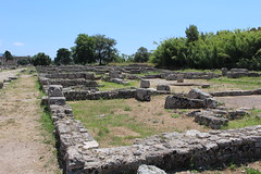 IMG_4927 Paestum (drayy) Tags: paestum rome roman ancient magnagraecia temple town italy europe campania greek