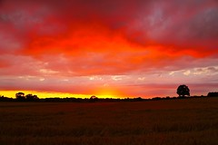 Shepherd's Delight (Ugborough Exile) Tags: gnosall stafford staffordshire midlands england uk sony a6300 2018 sunset