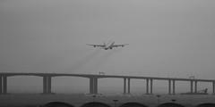 """Airbus, A34O-313, OO-ABE, """"Air Belgium"""", VHHH, Hong Kong (Daryl Chapman Photography) Tags: ooabe airbus a340 a343 a340300 a340313 938 ohlqe ay kf abb fin canon 5d mkiii 70200l hongkong china sar cheklapkok hkia clk hongkonginternationalairport planespotting departure 25l"""