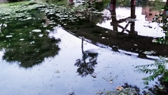 No sunk costs (jmerelo) Tags: bridge reflection japan pond garden