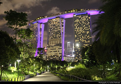 Marina Bay Sands at Night, Singapore (JH_1982) Tags: marina bay sands resort hotel casino architecture 濱海灣金沙酒店 マリーナベイ・サンズ 마리나 베이 샌즈 марина бей сэндс view path gardens park garden trees cityscape city urban urbanity skyscrapers skyscraper highrises highrise buildings building lights light glow glowing leuchten dunkel dark darkness nacht night nuit noche notte 晚上 夜 ночь beleuchtet beleuchtung lumière luz 光 свет evening singapore singapur singapour singapura 新加坡 シンガポール 싱가포르 сингапур