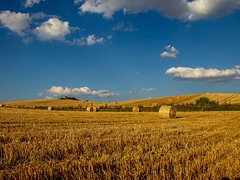 Harvest (7DWF - Monday's - Anything Goes) (CJD imagery) Tags: summer landscape countryside field clouds sky canonefs18135mmf3556isstm canoneos80d 7dwf harvest britishsummertime bst hertfordshire baldock england gb greatbritain uk unitedkingdom