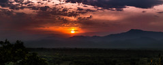 Nature's Drama (abhishek.verma55) Tags: landscape sunset sunsetpics sunsetlovers sun incredibleindia landscapelovers landscapes landscapephotography ©abhishekverma view clouds cloudy cloudscape drama canon550d travel panorama pano dooars duars outdoor outdoors outside dramatic nature beautiful beautifulnature beauty beautifulsky beautifulclouds cloud flickr photography majestic mountain mountains malbazar westbengal travelphotography travelphotos indiatravel rurallandscape rural fire fireball golden goldenhour goldenglow greens green greenery sunsetporn sunlight dusk evening beautyinnature picturesque colourful colour colorful colors naturephotography natureisbeautiful naturelove exploreindia explosionofcolors exploration indiaexplore