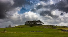 Tree tops (Phil-Gregory) Tags: trees hartington dovedale tree cloudscape clouds sky scenicsnotjustlandscapes landscapes green grass colour peakdistrict national naturalphotography naturephotography nationalpark natural landscapephotography nikon d7200 tokina 1120mmproatx11 1120mm tokina1120mmatx