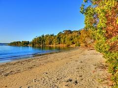 On the island II (elphweb) Tags: hdr highdynamicrange nsw australia seaside sea ocean water beach sand sandy brouleeisland island