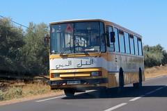 Morocco School Bus (So Cal Metro) Tags: bus schoolbus school morocco