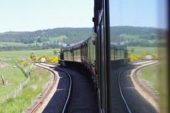 IMGP0974 (Steve Guess) Tags: strathspey steam heritage railway train caledonian 828 060 locomotive loco glenbogle broomhill