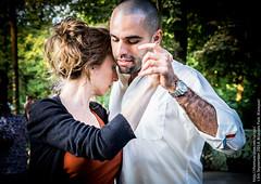 Tango is full of ... n°65