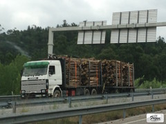 Scania 143M 420 Logging Tandem - Portugal (Freggs) Tags: timber lumber log scania 143m logging tandem portugal v8 a1 420