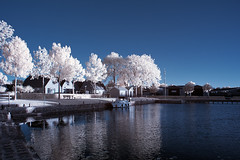 the last light 1 | 09:38pm (O l l i . B .) Tags: oldemarkt netherlands holland nederland ollib oliverbuchmann infrared infrarot landschaft landscape blue white water wasser tree bäume canoneos400d canonefs18135mmf3556isusm schiff ship boot