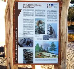 Frankenberg (Eder): Geostation Steinbruch Hohenäcker (fotonordhessen) Tags: geopark frankenberg steinbruch grenzwelten