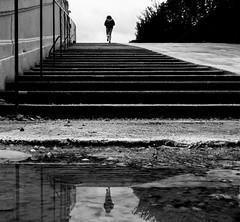Up And Down (CoolMcFlash) Tags: reflection puddle water stairs street streetphotography candid person bw bnw blackandwhite monochrome vienna fujifilm x30 spiegelung pfütze wasser stufen strase sw schwarzweis wien fotografie photography