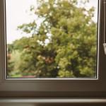 Behind The Window thumbnail