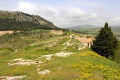 IMG_8070 (Vito Amorelli) Tags: segesta sicily dorictemple greektheater