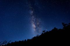 Milkyway in a Starry Night (neelesh8102) Tags: milkyway mountain night sky stars 合歡山