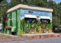 Art Substation 1 (DementyD) Tags: activism ecology graffiti street city astrakhan граффити улица город астрахань streetart