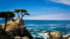 Lone Cypress 2 (J*Phillips) Tags: cypress summer california ocean tree pacific monterey ca usa