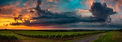 Coucher de soleil - Heure bleue - 04 Juillet 2018 (fra298) Tags: saintfortsurlené nouvelleaquitaine france fr canoneos70d sigma24105mmf4dgoshsmart panorama paysducognac vignoble