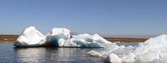 Laguna Jokulsarlon en el glaciar Vatnajokull  Islandia 32 (Rafael Gomez - http://micamara.es) Tags: laguna jokulsarlon en el glaciar vatnajokull islandia