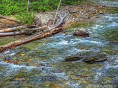Sullivan Creek (jimgspokane) Tags: sullivancreek camping forests countryroads creeks mountains today´sbest