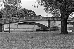 East Park Bridge Monochrome (brianarchie65) Tags: eastpark kingstonuponhull cityofculture canoneos600d geotagged brianarchie65 trees grass water lake bridges bridge balcony lighting reflectiononwater reflections flickrunofficial flickr flickrcentral flickrinternational ukflickr blackandwhitephotos blackandwhite blackandwhitephoto blackandwhitephotography blackwhite123 blackwhiterealms ngc