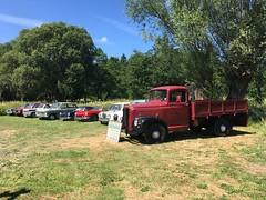 Classic cars and lorries Elvisham 14Jul18