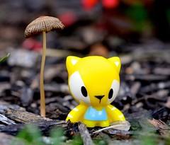 Danko with Mushroom (linda_lou2) Tags: 365the2018edition 3652018 day174365 23jun18 365toyproject 174365 danko crazybones gogo toy figure mushroom