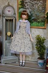 Miss Fiona (Girl Least Likely To) Tags: momoko sekiguchi closeclippedsheep dolls toys asianfashiondolls japanesetoys miniatures dollhouse dollscene diorama dollroom livingroom dresses