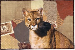 Cougar pc (bbsporty) Tags: swapbot handmade postcard mailart brown cougar