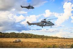 H-36 Caracal Carga Externa (Força Aérea Brasileira - Página Oficial) Tags: 1gav8 cpbv cpbvcampodeprovasbrigadeirovelloso cachimbo campodeprovasbrigadeirovelloso carga charuto esquadraofalcao fab forcaaereabrasileira forçaaéreabrasileira fotojohnsonbarros gancho h36caracal helicoptero impala brazilianairforce cabine novoprogresso pa brazil bra