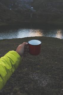 Coffee Mug in the nature