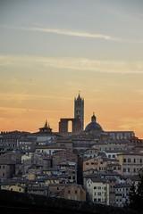 Sunset on the Duomo di Siena [EXPLORE] (Antonio Cinotti ) Tags: toscana tuscany italy italia siena sienna nikond7100 nikon d7100 duomodisiena tramonto sunset tamron tamron150600