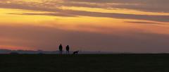 Dogwalkers (stevedewey2000) Tags: salisburyplain wiltshire spta sptaeast landscape candid casual sunset skyscape cloudscape clouds orange red people dogwalking bulford amr tamron150600 widescreen 2351
