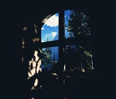 Monastery Window (Carla Putnam) Tags: window windowview mountains conifers trees pines pinetrees