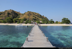 Kanawa Island, Komodo NP, Indonesia (JH_1982) Tags: jetty pier kanawa island resort beach turquoise water pacific ocean flores sea strand nature landscape scenery scenic mountain mountains islands aussicht komodo national park nationalpark np pn parc nacional parque taman nasional east west nusa tenggara unesco world heritage site parco nazionale 科莫多国家公园 コモド国立公園 코모도 국립공원 комодо национальный парк 科莫多島 コモド島 코모도섬 indonesia indonesien indonésie 印度尼西亚 インドネシア 인도네시아 индонезия