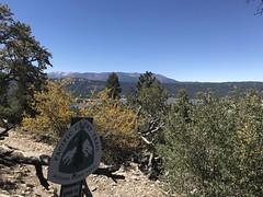 Cougar Crest Trail 2018June (12) (PSHiker) Tags: hike cougarcresthike bigbear serrano