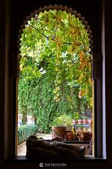 20101114 Sevilla (21) O01 (Nikobo3) Tags: europe europa españa spain andalucía sevilla casadepilatos arquitectura architecture travel viajes panasonic panasonictz7 tz7 nikobo joségarcíacobo