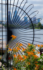 Half Moon  #HappyFenceFriday (maureen.elliott) Tags: happyfencefriday hff wroughtiron fence scrollwork curves city river flowers philadelphia boathouserow architecture