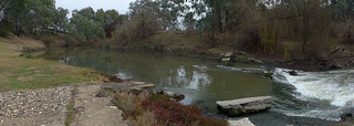 Lachlan River, Forbes, NSW (3)