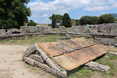 IMG_4934 Paestum (drayy) Tags: paestum rome roman ancient magnagraecia temple town italy europe campania greek