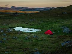 A place for rest (Fjällkantsbon) Tags: lappland sverige evamårtensson doroteakommun borgafjäll västerbottenslän se lapland nightlight tent hilleberg akto