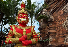 Red Guard (Matt Molloy) Tags: mattmolloy photography watlokmoli watlokmolee buddhist temple red gold guard statue scary armor crown decoration details demon guardian sword flowers leaves bricks palms art sculpture religion chiangmai thailand lovelife