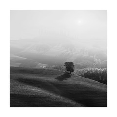 Table for one (Nick green2012) Tags: square illume tuscany minimal silence blackandwhite