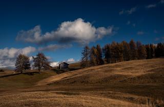 Autumn at the Alp