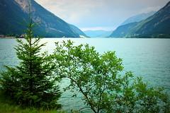 From blue to green (Achensee, Austria) (armxesde) Tags: austria österreich alpen alps berg mountain tirol karwendel tree baum see lake achensee water wasser