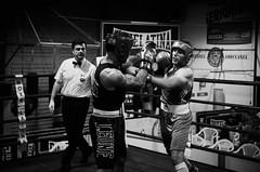 30703 - Hook (Diego Rosato) Tags: boxe boxing pugilato boxelatina ring match incontro bianconero blackwhite nikon d700 2470mm tamron rawtherapee pugno punch